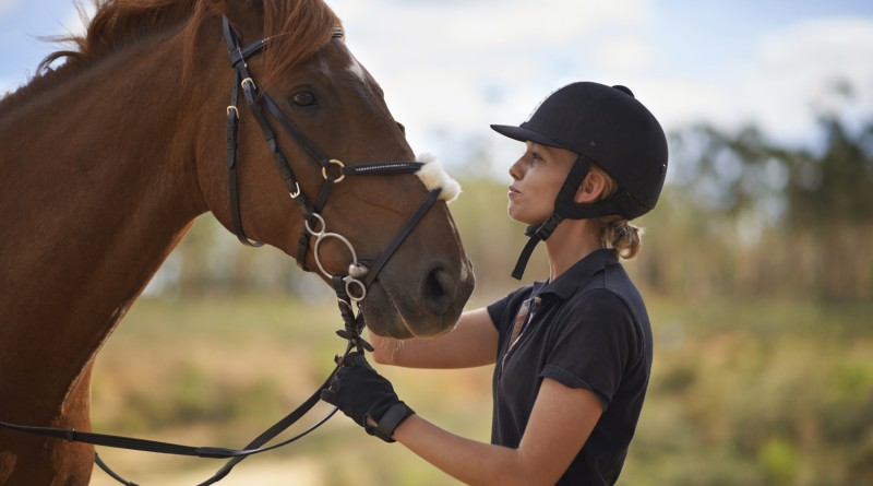 A young female rider being affectionate with her chestnut horse
